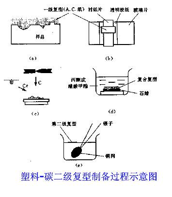 透射电镜 论坛图片 - 透射电镜